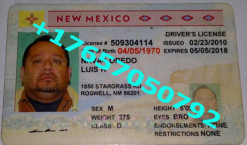 NEW MEXICO ID (Drivers License)