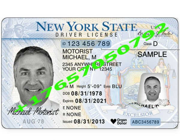 NEW YORK ID (Drivers License)