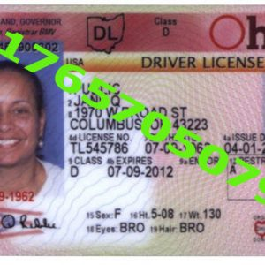OHIO ID (Drivers License)