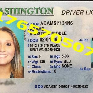 WASHINGTON ID (Drivers License)