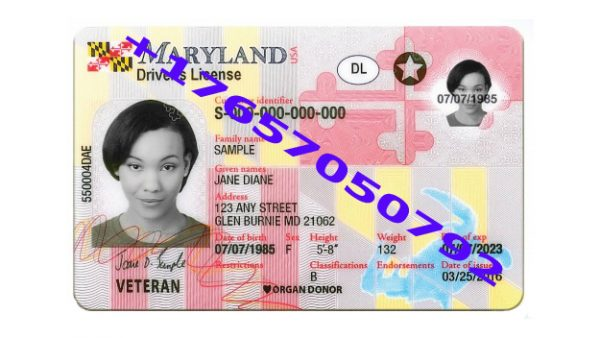 where to buy USA drivers license